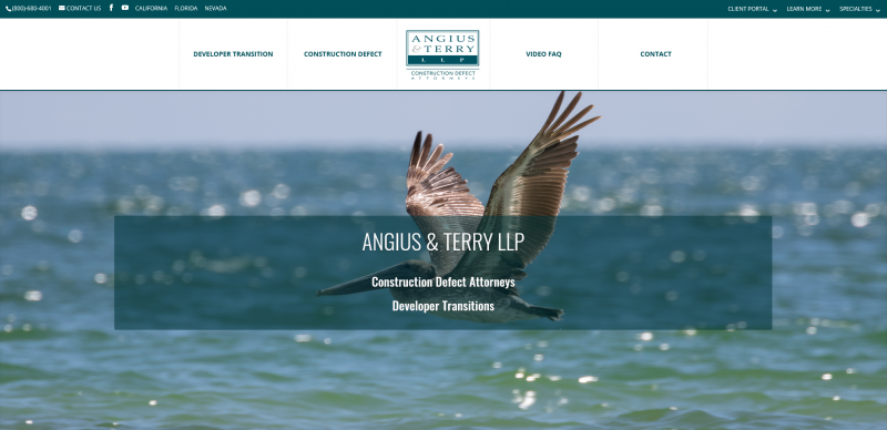 Attorney Angius & Terry LLP