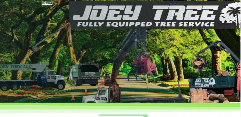 Joey Tree
