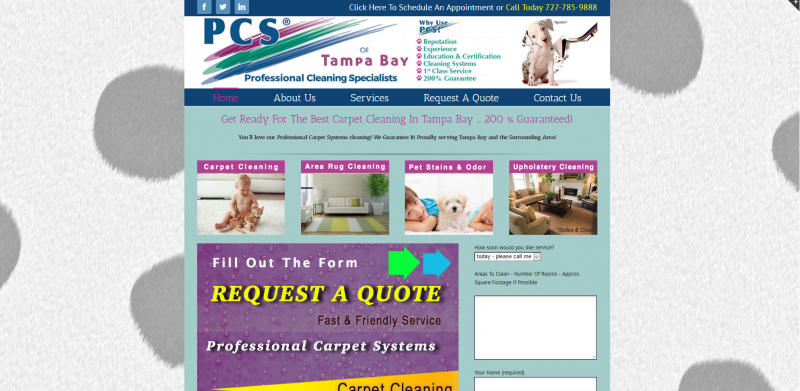 Professional Carpet Systems